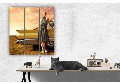Девушка и автомобиль