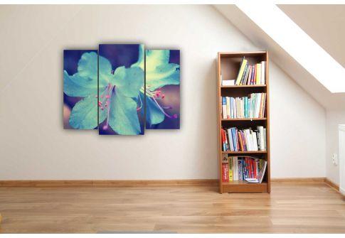 Голубая лилия