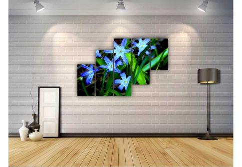 Голубые лилии