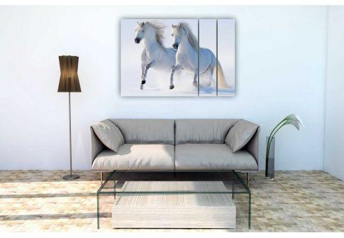 Лошади 11