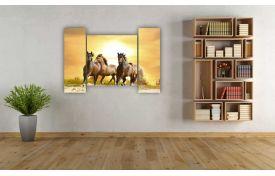 Лошади 13
