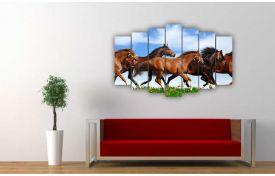 Лошади 14