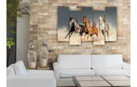 Лошади 17
