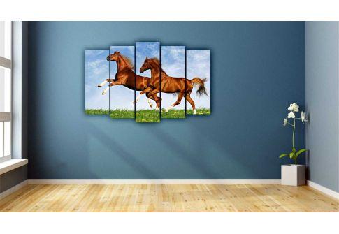 Лошади 7